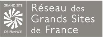 Logo RGSF Final